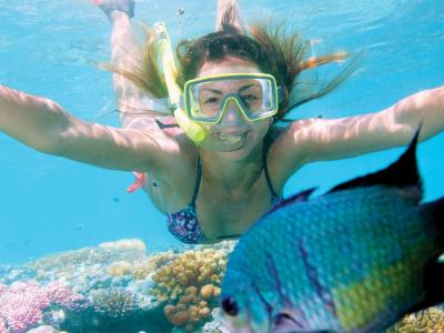 Snorkelling on the Great Barrier Reef. Photo credit: Frontier Education