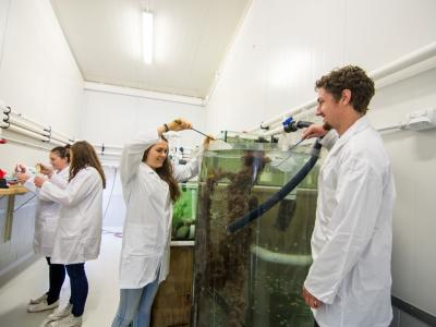 You can study aquaculture. Photo credit NMIT