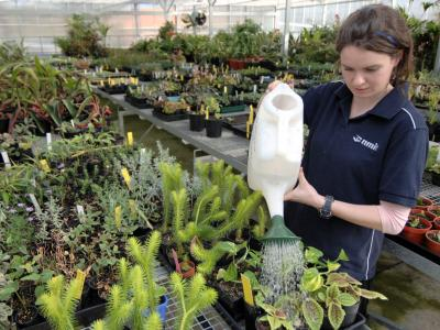 You could study horticulture at Melbourne Polytechnic.  Photo credit: Melbourne Polytechnic