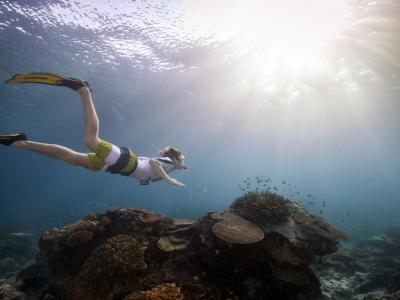 Snorkelling on the Great Barrier Reef.  Photo credit: Tourism Australia copyright.